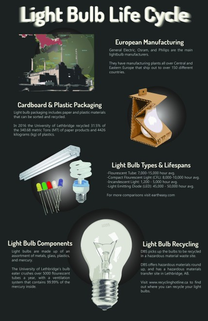 c. 2017 Recycling Infographic